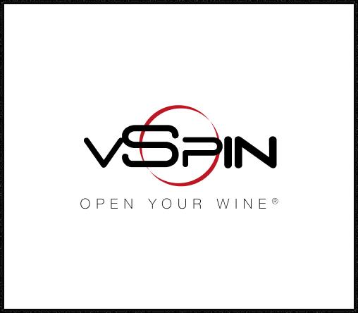 logo vSpin